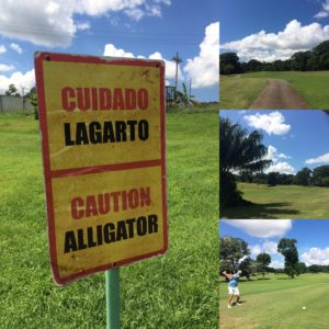 Tucan Golf Collage